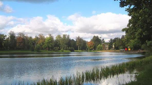 Колонистский (Фридентальский) пруд, Россия, Ленинградская область